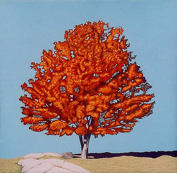 The Holland Road Maple by Allan OMarra