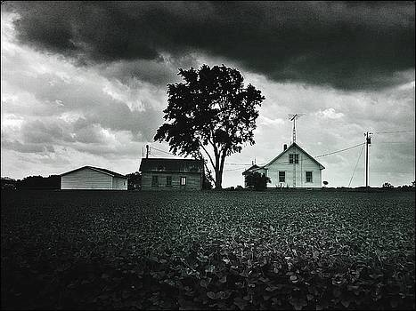 The Homestead by Michael L Kimble
