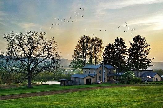 The Homestead by Stephanie Calhoun