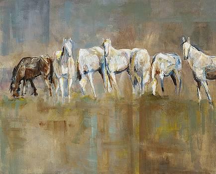 The Horizon Line by Frances Marino