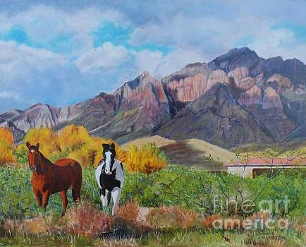 The Horses of the Chiricahua Mountains by Jeannie Allerton