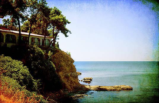 the House on the Rocks by Milena Ilieva