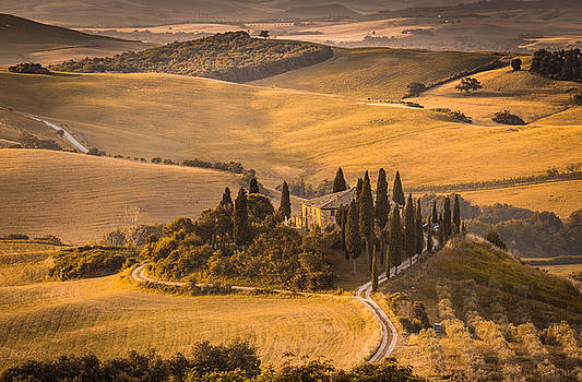 The house by Stefano Termanini