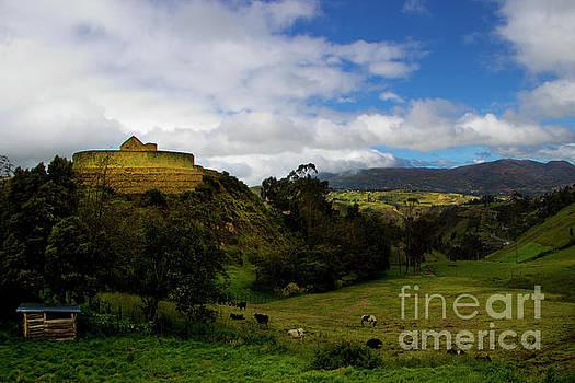 The Inca-Canari Ruins At Ingapirca V by Al Bourassa