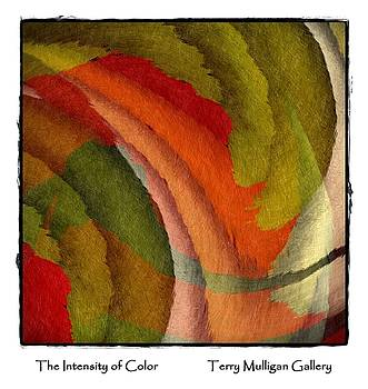 The Intensity of Color by Terry Mulligan