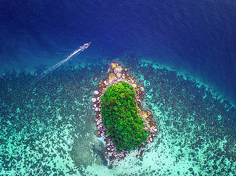 The Island by Evgeny Vasenev