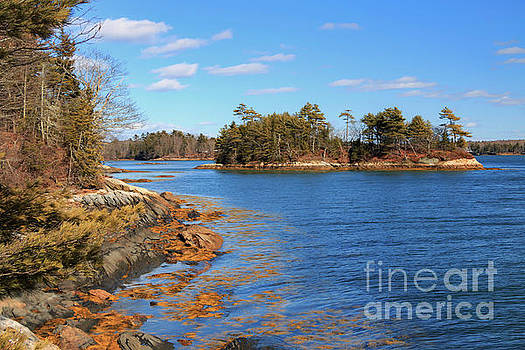 The Islands of Maine  by Elizabeth Dow