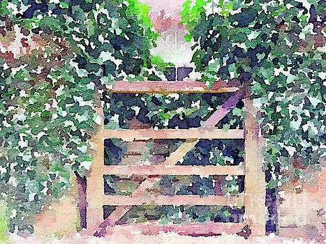 The Ivy Gate by Anita Van Den Broek