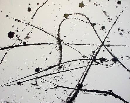 The Jagged edge by Rod Schneider