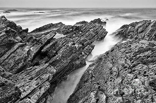 Jamie Pham - The jagged rocks and cliffs of Montana de Oro State Park in Cali