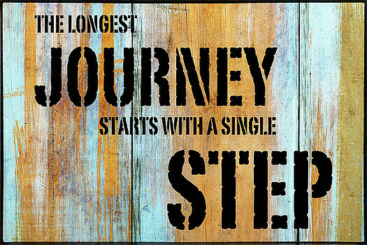 The Journey Begins by Skip Nall