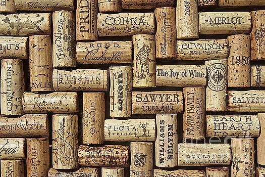 The Joy of Wines by Anthony Jones