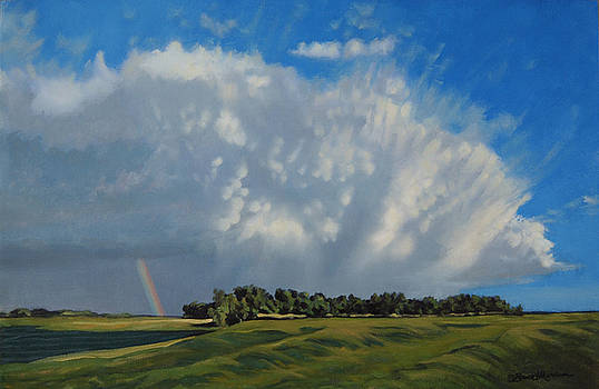 The June Rains Have Passed by Bruce Morrison