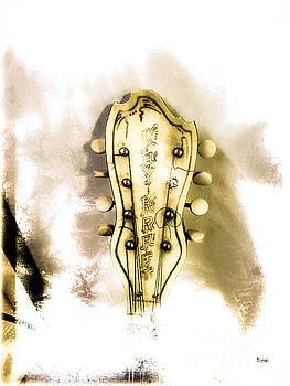 The Kay Kraft Mandolin  by Steven Digman