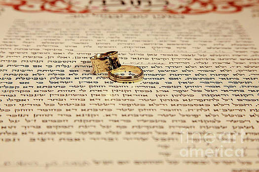 The ketubah by Oren Shalev