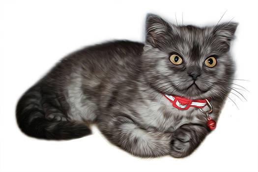 The Kitten Is Lying by Tatiana Tyumeneva