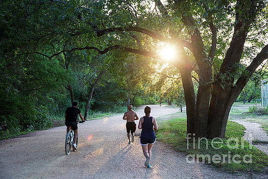 Herronstock Prints - The Lady Bird Lake Hike and Bike Trail is the most popular place to exercise for joggers, runners and bikers in downtown Austin