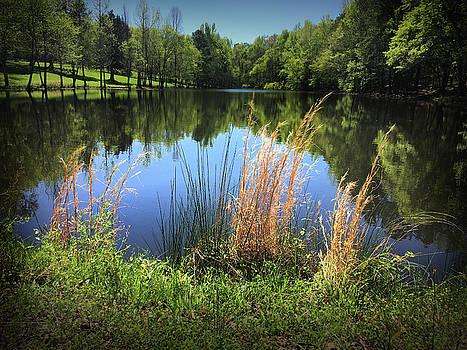 The Lake at Musgrove Mill by Kelly Hazel
