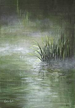 The Lake by Ewa Gawlik