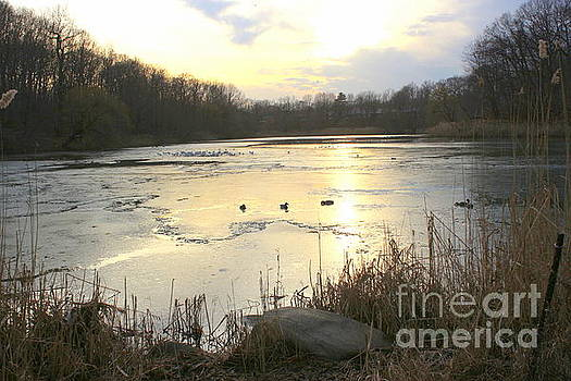 The Lake Has Frozen by Dora Sofia Caputo Photographic Design and Fine Art
