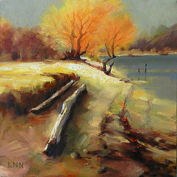 The Last Beam of Light by Ningning Li