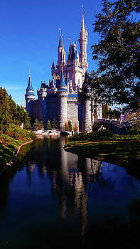 The Last Castle by Barkley Simpson