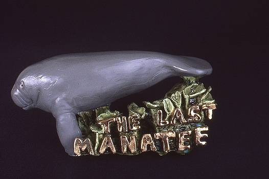 The Last Manatee by Frederick Dost
