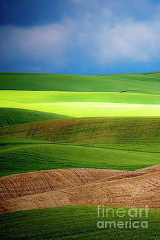 The Layers of Palouse by Katya Horner