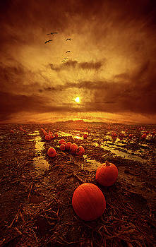 The Left Overs by Phil Koch