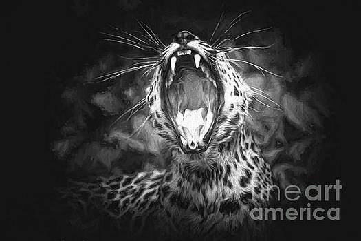 The Leopard's Tongue Rolling Roar II by Mary Lou Chmura