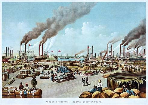 The levee, New Orleans, poster 1884 by Vintage Printery