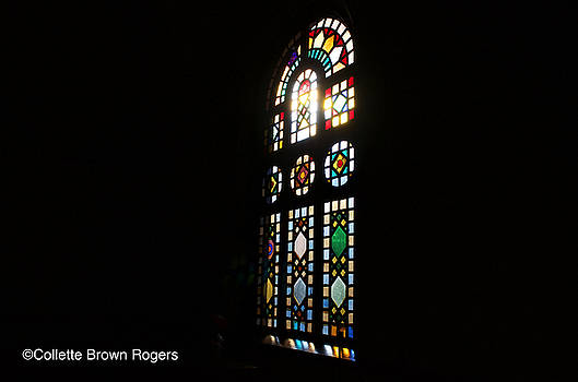 The Light by Collette Rogers