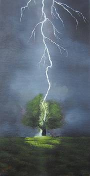 The Lightning Tree by David  Barnes
