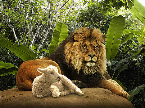 The Lion and the Lamb by M Spadecaller