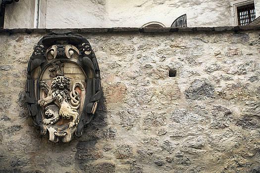 Jed Holtzman - The Lion of Salzburg