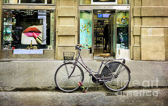 The Lipstick Bicycle by Craig J Satterlee