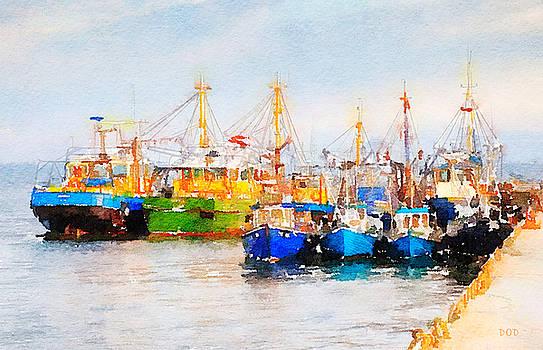 The Little Fleet by Declan O'Doherty