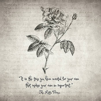 Zapista Zapista - The Little Prince Rose Quote
