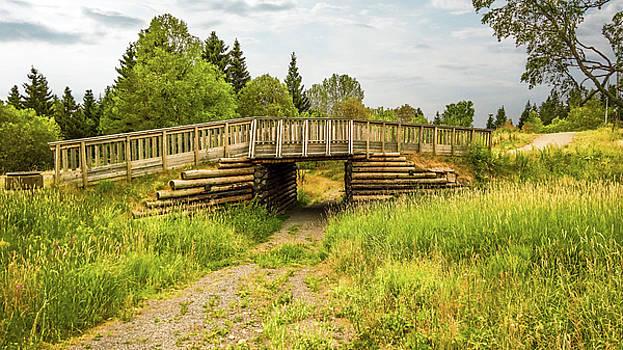 The Little Wooden Bridge by Emiliano Giardini