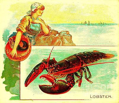 Peter Ogden Collection - The Lobster Allen and Ginter Cigarettes Tobacco Card 1880s