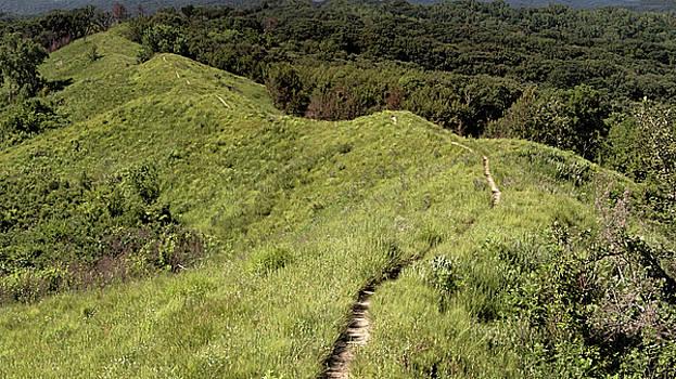 Susan Rissi Tregoning - The Loess Hills