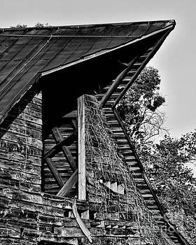 The Loft by Randy Rogers