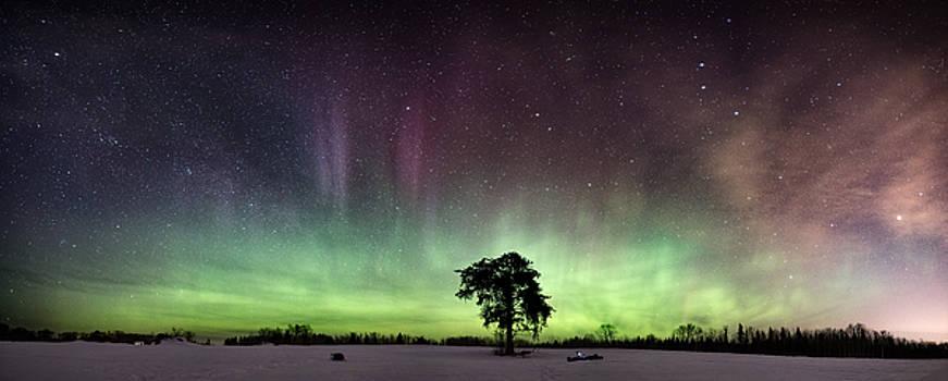 The Lone Tree early March Aurora panorama by Jakub Sisak