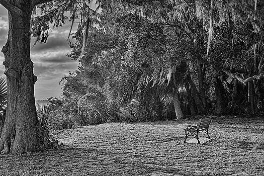The Lonely Bench by Roberto Aloi