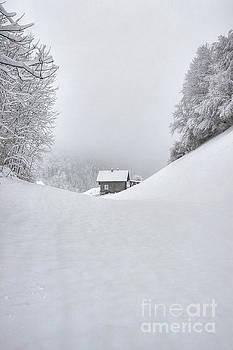 The lonely House by Caroline Pirskanen