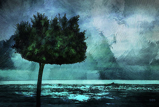 The Lonely Tree by Declan O'Doherty