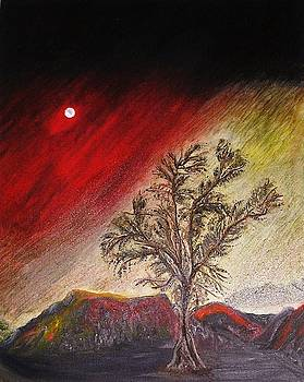 The Lonely Tree by Pilar  Martinez-Byrne
