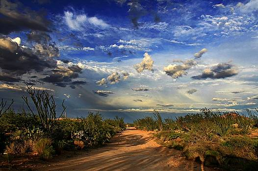 The Long Road Home by Kimmi Craig