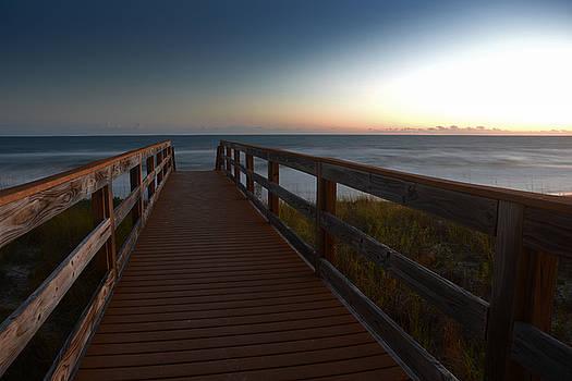 The Long Walk Home by Renee Hardison