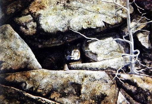 Frank Wilson - The Lookout Lynx